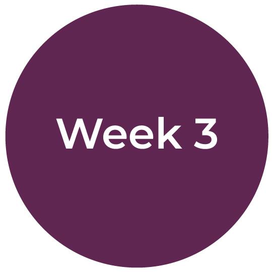Bootcamp-IC-Week3
