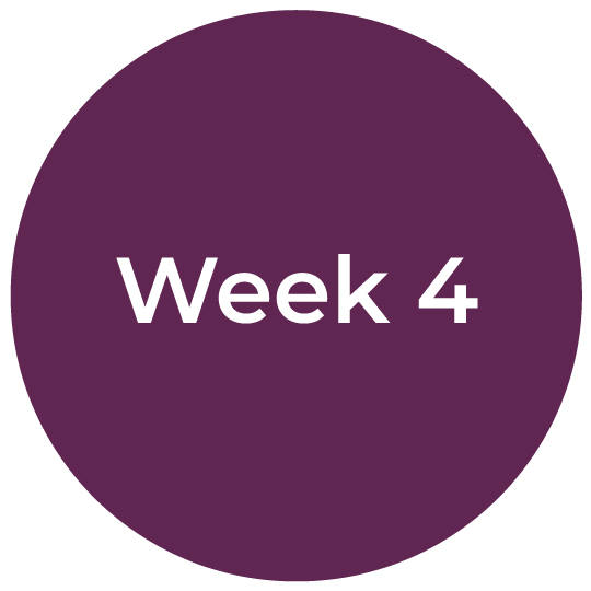 Bootcamp-IC-Week4