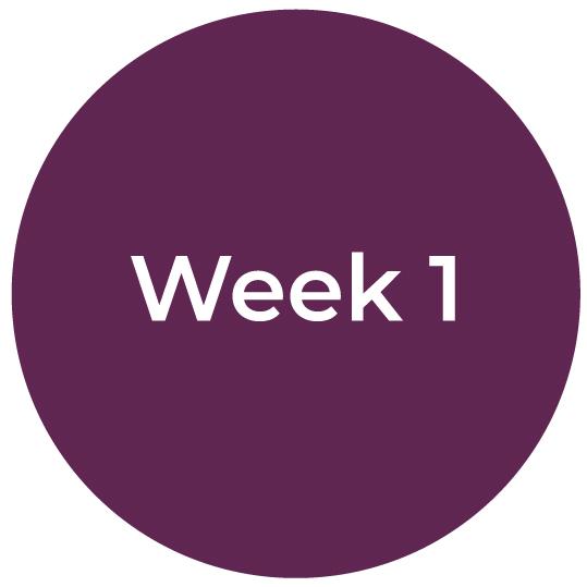 Bootcamp-IC-Week1